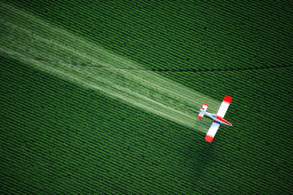 Pesticide and Herbicide Residuals
